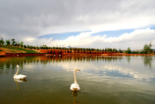 青海高原野生动物园景色迷人