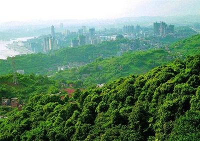 造林10万亩西宁镶上绿绸带