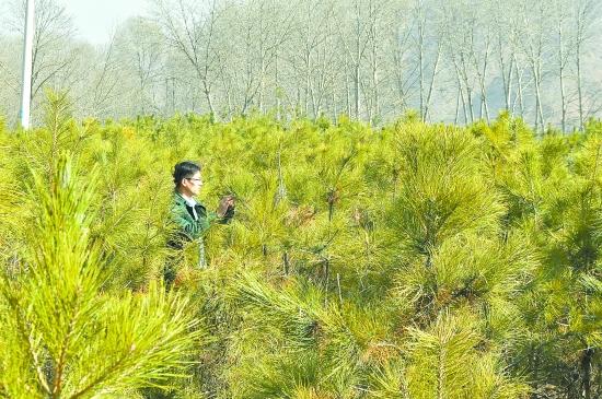 生态环保媒体行:年轻的城市 绿色的家园