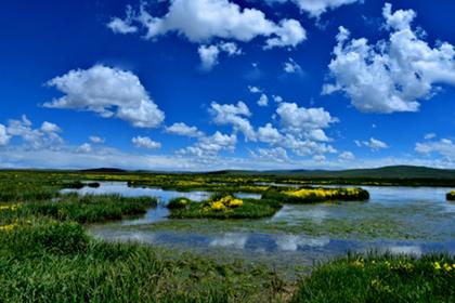 青海新增4处国家湿地公园 总面积已达32.51万公顷
