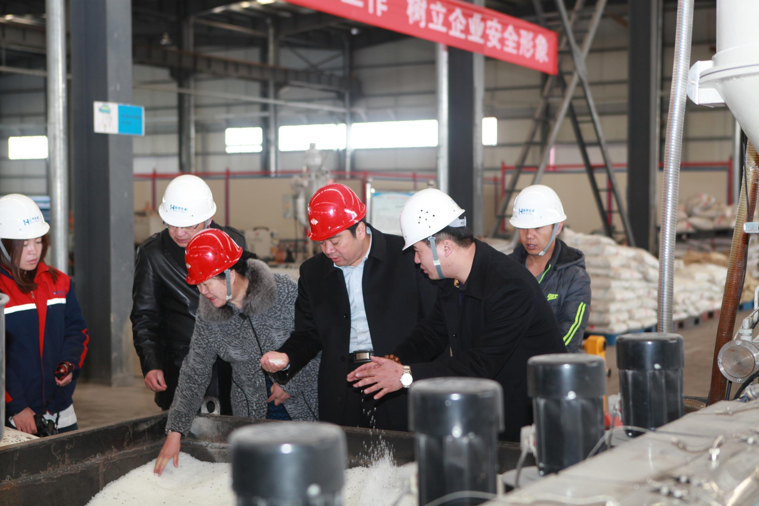 王霞、李永平赴德令哈工业园区企业调研