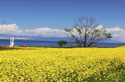 """今日青海:中国最美湖,打开全域游""""升级模式"""""""