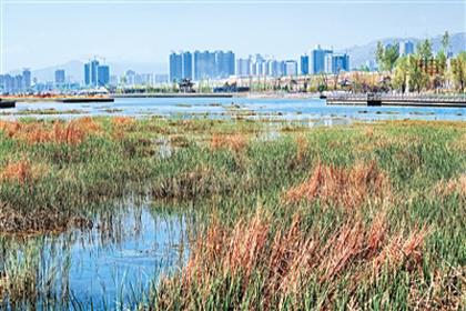 正在建设中的北川河湿地公园