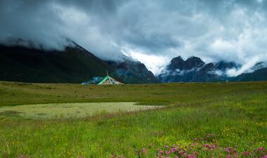 果洛:海拔3800米以上的生态新绿洲