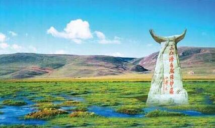 三江源自然保护区发现4只白色马鹿 这是国内首次野外记录的马鹿基因变异