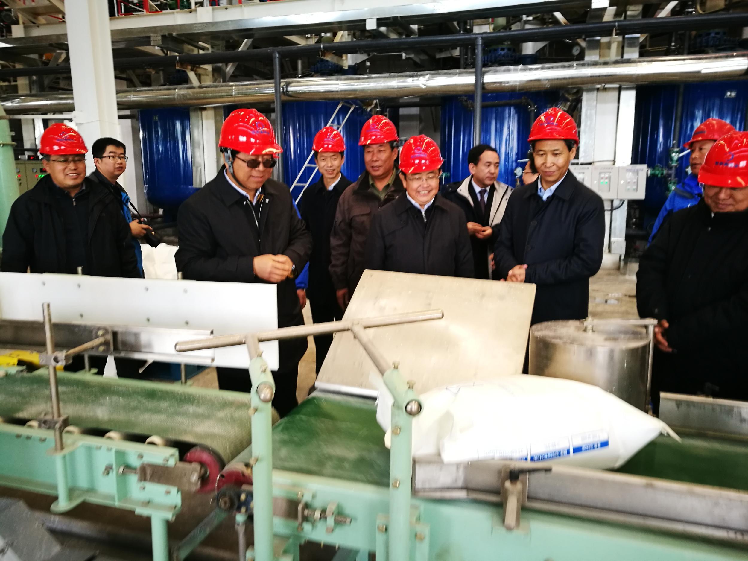 青海恒信融锂业科技有限公司年产2万吨电池级碳酸锂项目正式投产
