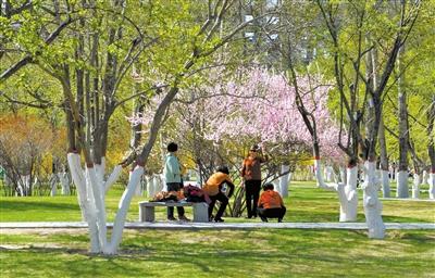 青海全季旅游迎来春暖花开