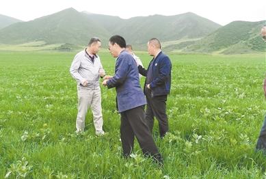 休闲农牧业—— 农牧民增收新模式