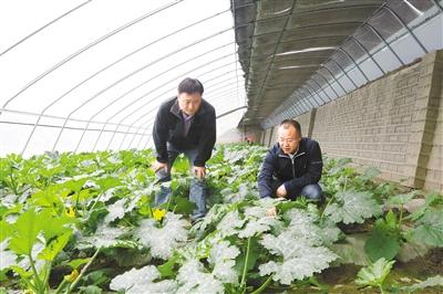 真情温暖果洛大地——上海对口支援果洛工作纪实