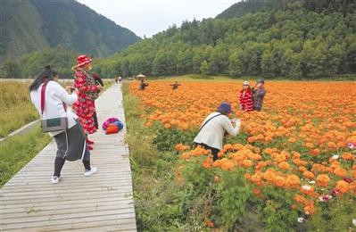 秋季,a6时时彩平台去门源鱼儿山看风景