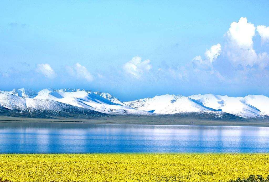青海湖较好水质成动植物天堂
