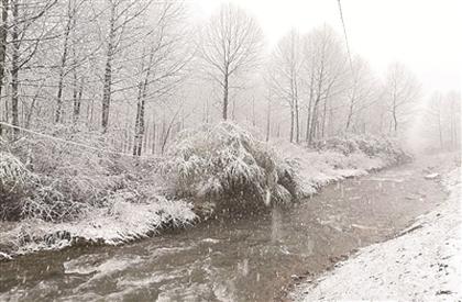 拍客眼中的雪景