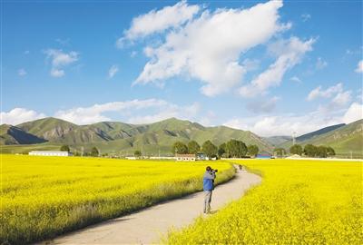 依靠着卓尔山景区发展起来的祁连县八宝镇麻拉河村,去年七月也有了
