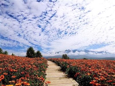 青海生态旅游游客量超千万人次