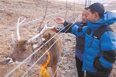 """两个藏族少年和一本""""肖才仁""""成长日记"""