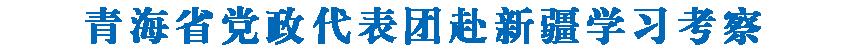 青海省党政代表团赴新疆学习考察  陈全国 王建军 雪克来提·扎克尔 刘宁 肖开提·依明 努尔兰·阿不都满金参加