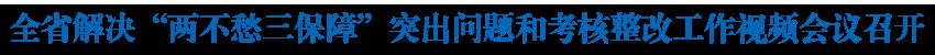 """全省解决""""两不愁三保障""""突出问题和考核整改工作视频会议召开 王建军刘宁分别提出工作要求"""