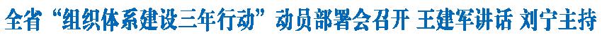 """全省""""组织体系建设三年行动""""动员部署会召开 王建军讲话 刘宁主持"""