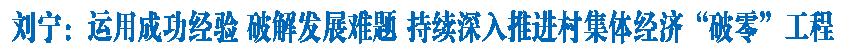 """刘宁在全省村集体经济""""破零""""工程领导小组会议上强调 运用成功经验 破解发展难题 持续深入推进村集体经济""""破零""""工程"""
