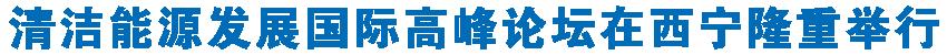清洁能源发展国际高峰论坛在西宁隆重举行 王建军綦成元致辞 刘宁作主旨报告