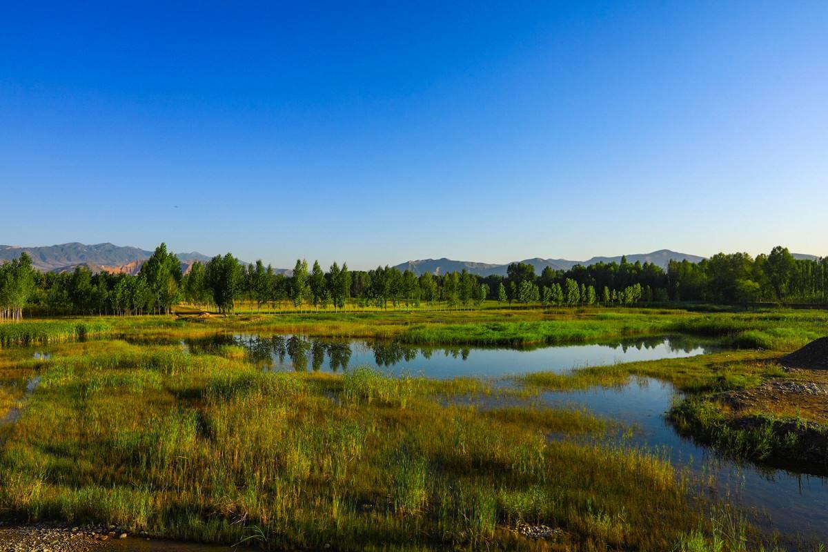 全省拥有湿地资源814.36万公顷占全国湿地总面积的15.19%,湿地面积居全国第一