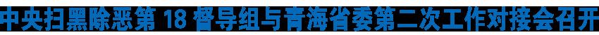 中央扫黑除恶第18督导组与青海省委第二次工作对接会召开  吴新雄主持并通报下沉督导情况 王建军作表态发言