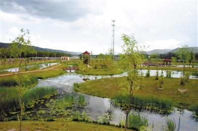 """""""污水""""中建起的湿地公园"""