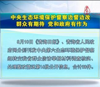 中央生态环境保护督察边督边改第16批公开信息