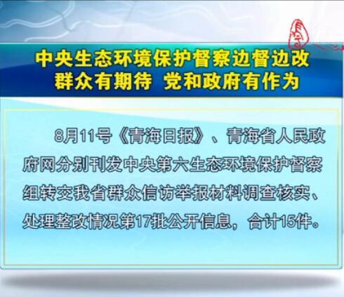 中央生态环境保护督察边督边改第17批公开信息