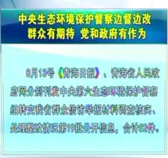 中央生态环境保护督察边督边改第19批公开信息