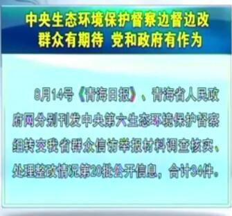中央生态环境保护督察边督边改第20批公开信息