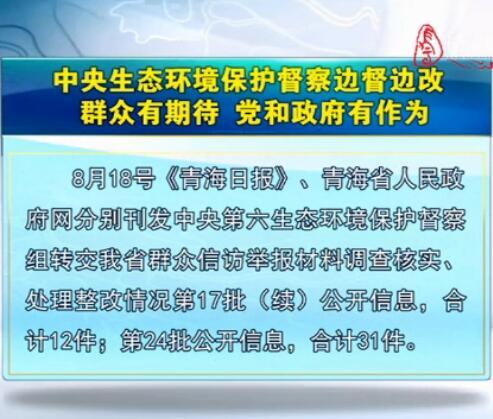 中央生态环境保护督察边督边改第24批公开信息