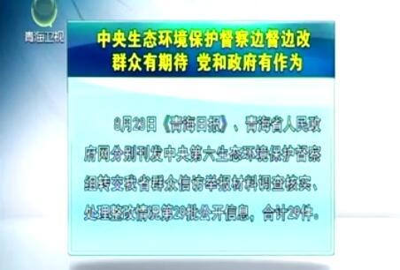 中央生态环境保护督察边督边改第29批公开信息