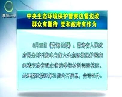 中央生态环境保护督察边督边改第31批公开信息
