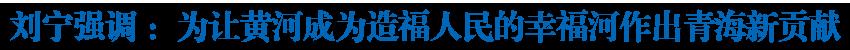 刘宁在省政府专题会议上强调 深入学习贯彻习近平总书记重要讲话精神 为让黄河成为造福人民的幸福河作出青海新贡献