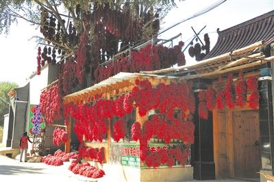 金色江源庆丰收 ——我省各地庆祝第二个中国农民丰收节见闻