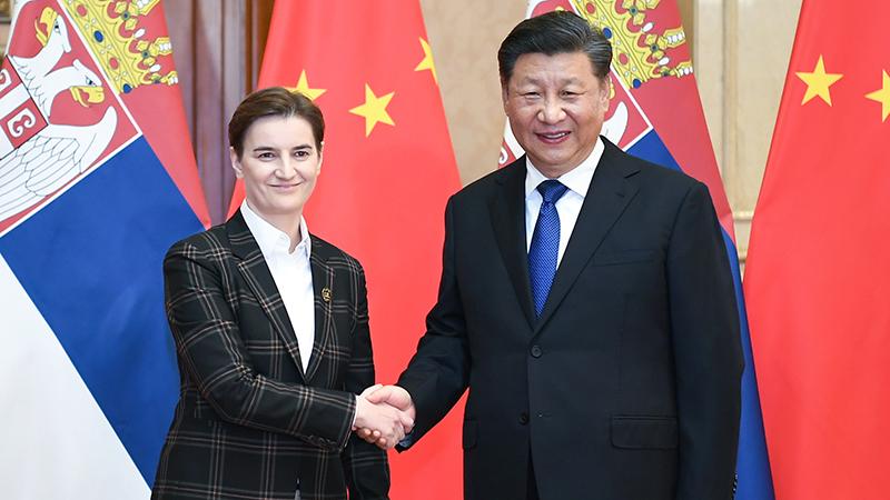 习近平会见塞尔维亚总理布尔纳比奇
