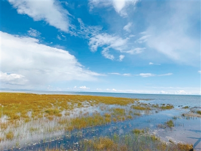 青海湖:不一样的季节,不一样的美