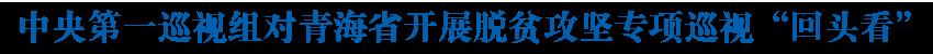 """中央第一巡視組對青海省開展脫貧攻堅專項巡視""""回頭看"""""""