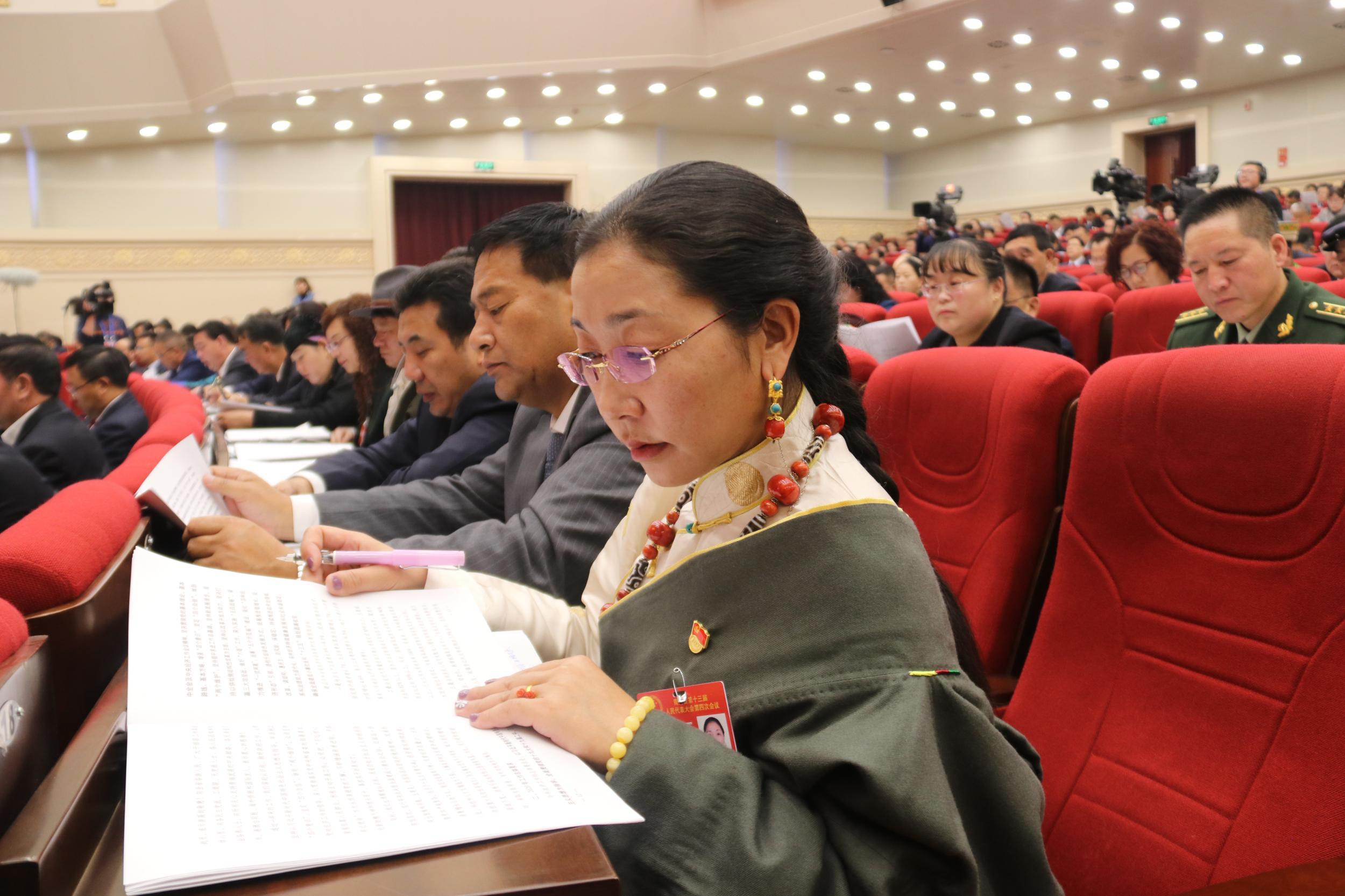代表、委员聆听政府工作报告
