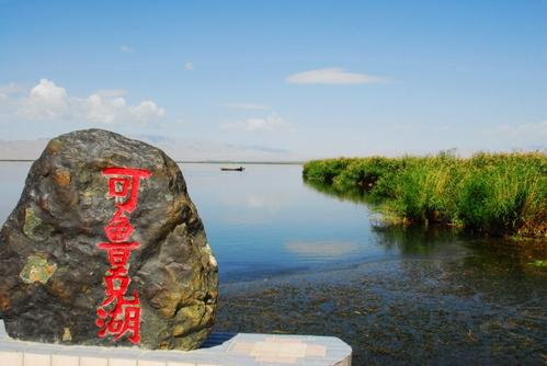 可鲁克湖托素湖迎来候鸟迁徙高峰
