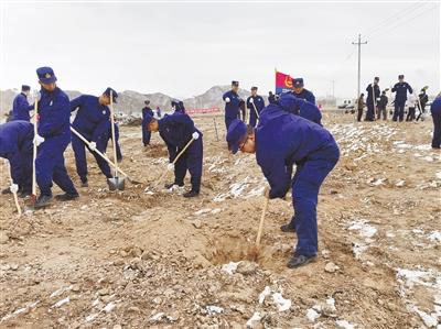 在瀚海戈壁播種綠色的希望——2020年海西蒙古族藏族自治州義務植樹活動側記