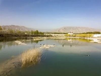 青海初步确定6处小微湿地试点建设区
