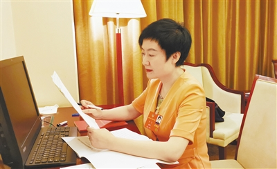 青海代表团精心准备代表议案建议