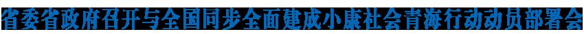 省委澳门黄金城召开与全国同步全面建成小康社会青海行动动员部署会  奋力夺取全面建成小康社会伟大胜利  王建军讲话 刘宁作动员部署