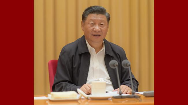 習近平:全面貫徹新時代黨的治藏方略  建設團結富裕文明和諧美麗的社會主義現代化新西藏
