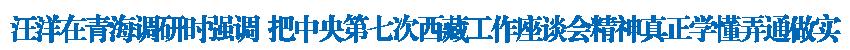 汪洋在青海調研時強調 把中央第七次西藏工作座談會精神真正學懂弄通做實