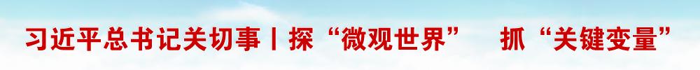 """习近平总书记关切事丨探""""微观世界"""" 抓""""关键变量""""——我国科学家与量子""""纠缠""""的故事"""