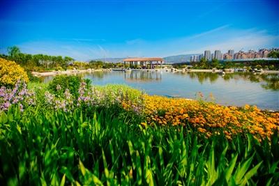 今年西宁新增园林绿地455亩