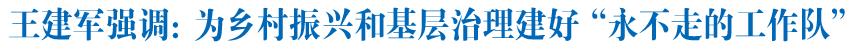 """王建軍在互助調研村""""兩委""""換屆選舉工作時強調為鄉村振興和基層治理建好""""永不走的工作隊"""""""